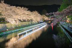 Cherry blossom at night, Kyoto by night Stock Image