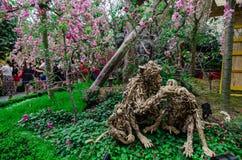 Cherry Blossom på trädgården vid fjärden Arkivfoto