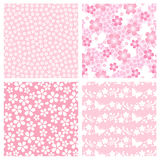 Cherry blossom pattern. Set of cherry blossom patterns.  Vector illustration Royalty Free Stock Images