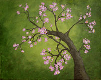 Cherry Blossom. With pink flowers with green background. Hand painted in acrylic Royalty Free Stock Images