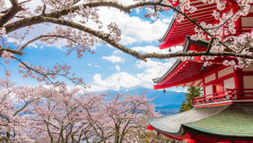 :Cherry blossom sakura in spring season and Red pagoda with Mt. Stock Images