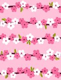 Cherry blossom. Seamless background. Vector illustration Stock Images