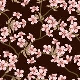 Cherry blossom seamless flowers pattern Royalty Free Stock Photography