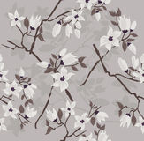 Cherry blossom seamless pattern Royalty Free Stock Photo