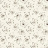 Cherry blossom seamless pattern. Stock Image