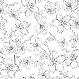Cherry blossom seamless pattern. Royalty Free Stock Photo