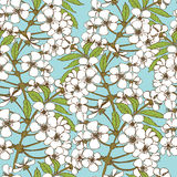 Cherry blossom seamless pattern Stock Image