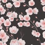 Cherry blossom seamless pattern Stock Photo