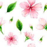 Cherry blossom. Seamless pattern of pink flowers and green leave Stock Photo