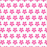Cherry blossom seamless pattern on white background Royalty Free Stock Image