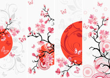 Cherry blossom set Stock Photo