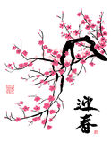 Cherry Blossom in the Spring stock illustration