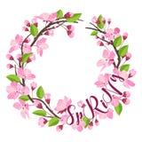 Cherry Blossom Spring Background - com a grinalda floral no vetor Foto de Stock Royalty Free