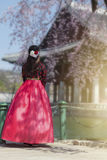 Cherry Blossom in spring at Gyeongbokgung Palace. Korean national dress with Cherry Blossom in spring at Gyeongbokgung Palace Seoul,South Korea.n stock photos