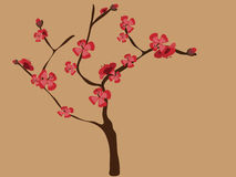 Cherry Blossom Tree. Drawing of a Cherry Blossom Tree in full bloom with red flowers Stock Photography