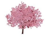 Cherry Blossom Tree Immagine Stock Libera da Diritti