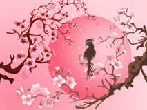 Cherry blossom tree with bird. Japanese style Royalty Free Stock Photo