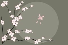 Cherry Blossom Tree and Butterfly Royalty Free Stock Photography