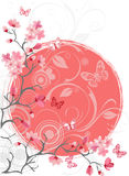 Cherry blossom tree, white background. Cherry blossom tree for your design. Vector Royalty Free Stock Photos