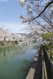 Cherry Blossom Trees along a Branch of the Lake Biwa Canal in Okazaki area in Kyoto stock photos