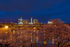 Cherry Blossom Trees på Portland strand under blå timme Fotografering för Bildbyråer