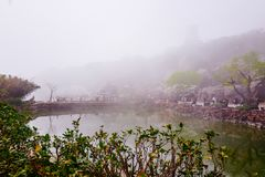 Cherry Blossom valley,wuxi,china. Wuxi Taihu Yuantouzhu Park Cherry Blossom valley stock image