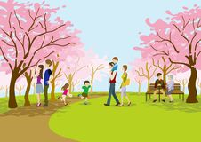 Cherry-blossom viewing in the park. Illustration of People Who enjoying Cherry-blossom viewing in the park vector illustration