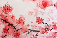 Cherry Blossom Watercolor Series 8 Stock Photo