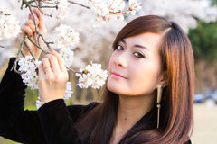 Woman in Cherry Blossom. Cherry Blossom with woman portrait face closeup Royalty Free Stock Images