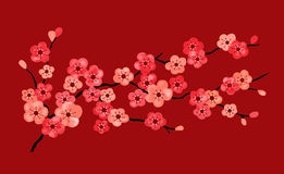 Cherry Blossoms. In red, orange, and  pink on a dark red background Royalty Free Stock Image
