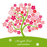 Cherry blossoms. This graphic is cherry blossoms. Illustration Stock Photos