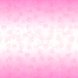 Cherry blossoms. Background illustration of beautiful pink cherry blossoms Royalty Free Stock Image