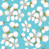 Cherry blossoms. Seamless pattern with cherry blossoms royalty free illustration