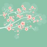 Cherry Blossoms Royalty Illustrazione gratis