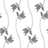 Cherry Blossoms ilustração royalty free