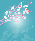 Cherry blossoms with birds Royalty Free Stock Photos