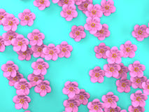 Cherry Blossoms On Blue Background Royalty Free Stock Photo