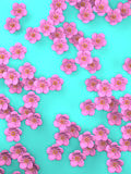 Cherry Blossoms On Blue Background Stock Photos