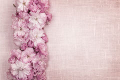 Cherry blossoms border on pink linen Stock Images