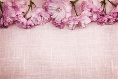 Cherry blossoms border on pink linen. Border of pink cherry blossoms row with linen background Royalty Free Stock Images