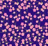 Cherry blossoms with the branches pattern on a violet background. Seamless pattern with Blooming Sakura or cherry . Vector illustration with cherry blossoms Stock Image
