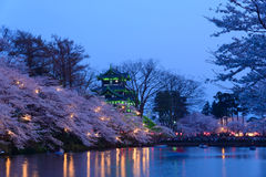Cherry blossoms and Castle in the twilight Royalty Free Stock Photo