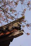 Cherry blossoms and Chinese architectural details Royalty Free Stock Photos