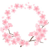 Cherry blossoms. Circle frame of cherry blossom by vector illustration Stock Photo
