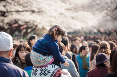 Cherry Blossoms festival in Ueno Park,Tokyo,Japan royalty free stock photos