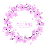 Cherry Blossoms Flowers Wreath royaltyfri illustrationer