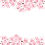 Cherry blossoms. Frame of cherry blossom by vector illustration stock illustration