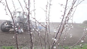 Cherry blossoms in front black field. SMELA, CHERKASSKAYA/UKRAINE - APRIL 10 2013:  Cherry blossom in front of black field is plowing tractor pull up and stop on stock video footage