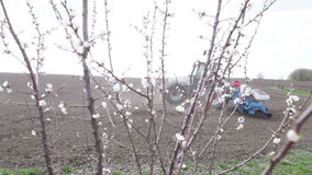 Cherry blossoms in front black field. SMELA, CHERKASSKAYA/UKRAINE - APRIL 10 2013:  Tractor lifts and turns and drill with cherry blossom on April 10 in Smela stock video