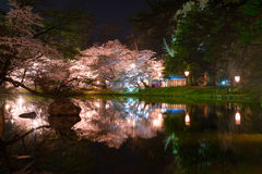 Cherry blossoms and Hirosaki Park Royalty Free Stock Photos